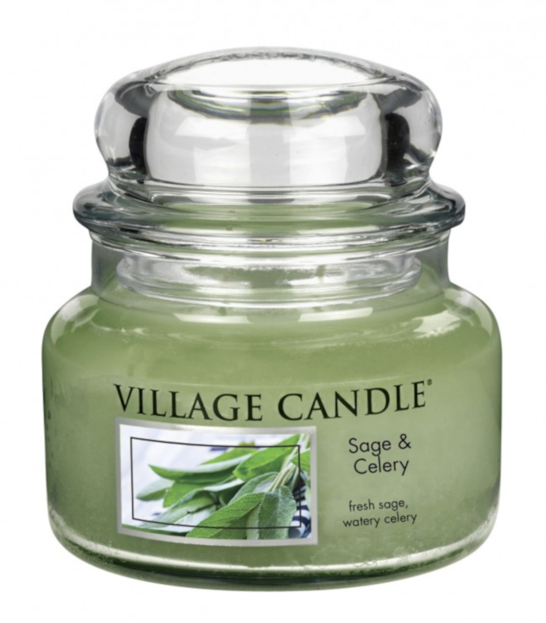 Village Sage and Celery 11oz Small Jar Candle